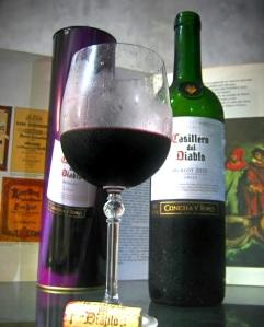 """Notare nella foto che il vino sembra molto freddo (""""blasfemia""""... per un buon vino rosso italiano... e con dietro un libro, che rimanda a storie e racconti)"""